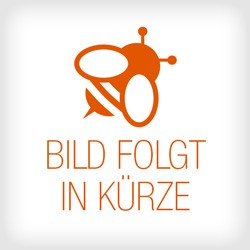 101230_segeberger-beute-classic-flachboden_01