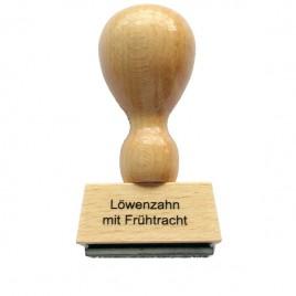 106654_sortenstempel-loewenzahnhonig-mit-fruehtracht_01.jpg